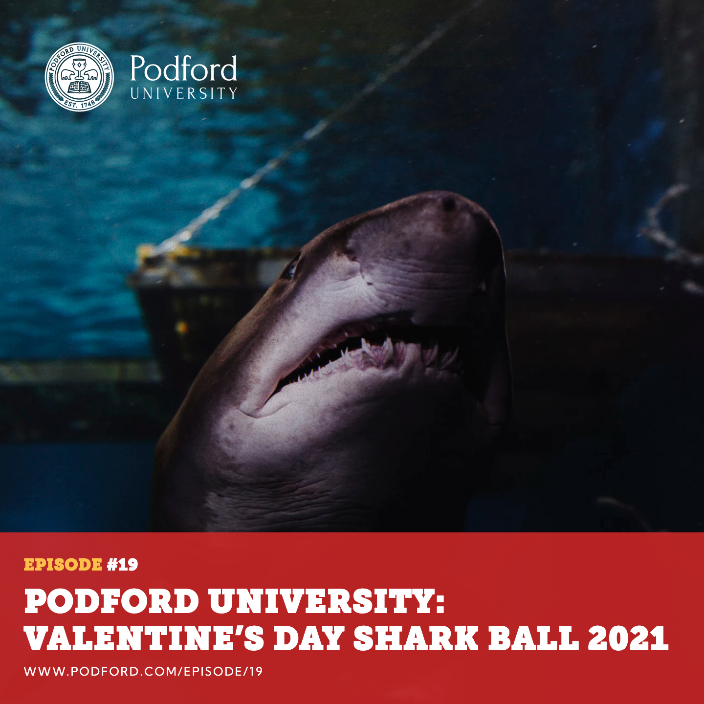 Podford University: Valentine's Day Shark Ball 2021