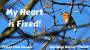 Artwork for My Heart is Fixed