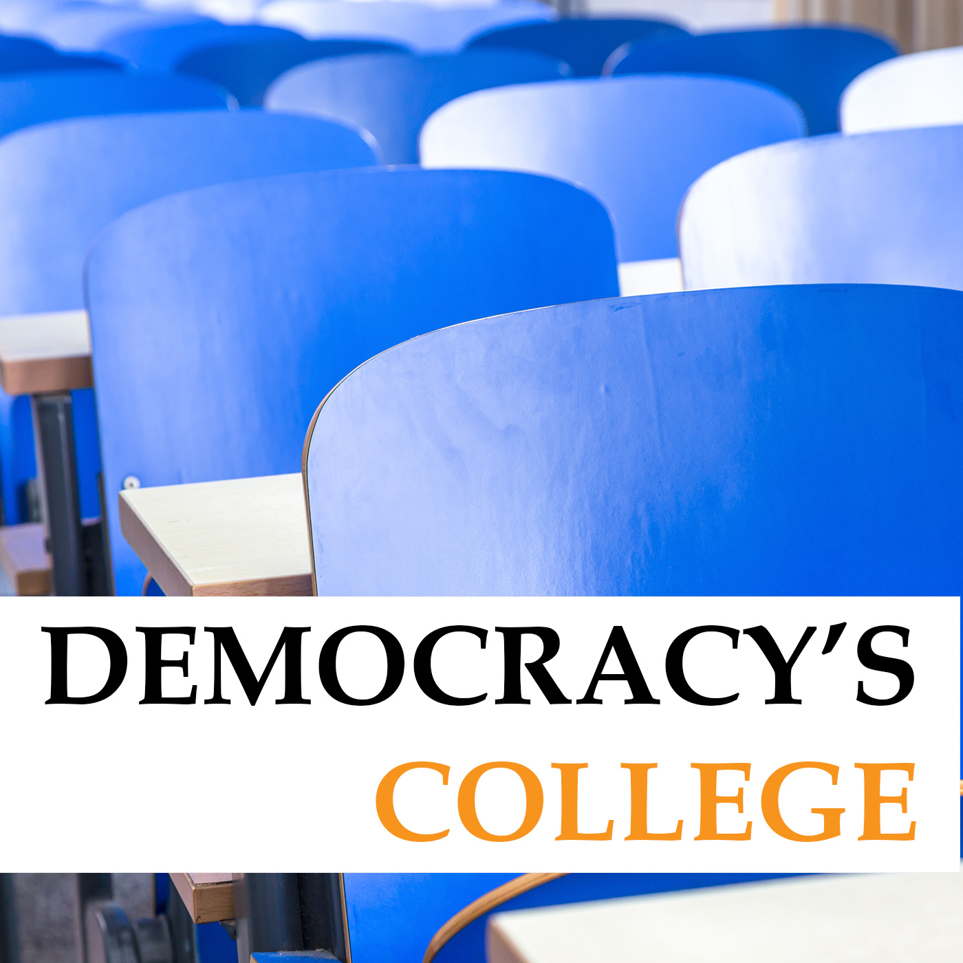 Democracy's College: Research and Leadership in Educational Equity, Justice, and Excellence show art
