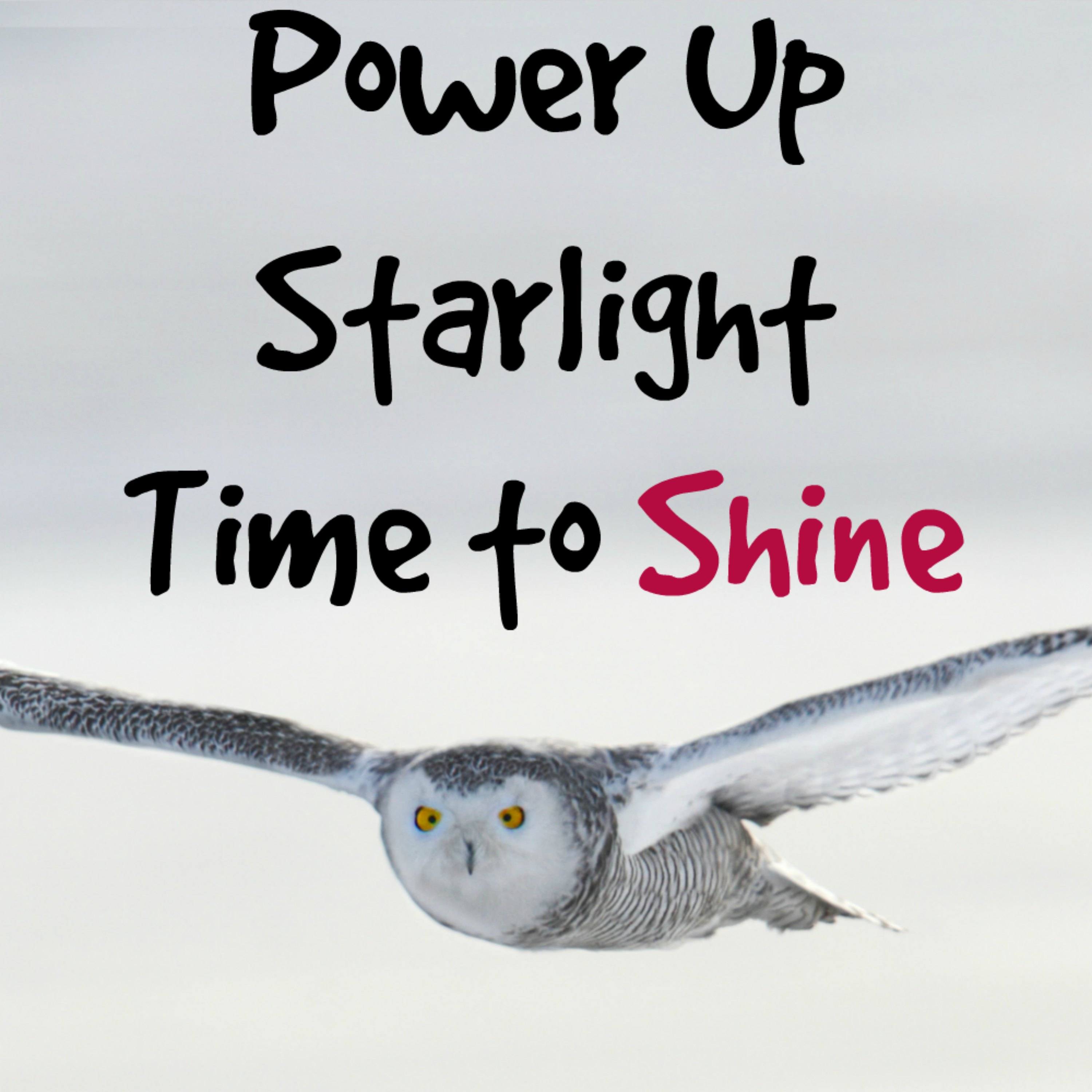 Power Up Starlight - Channeled Messages to Help You Shine show art