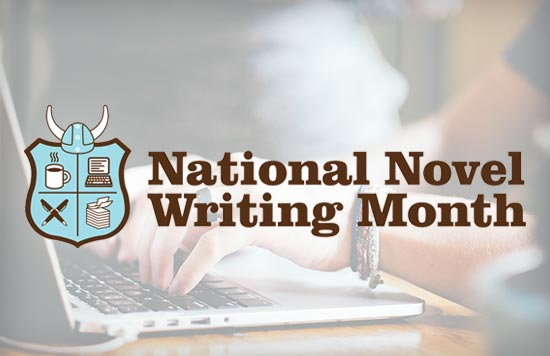 NaNoWriMo Executive Director Grant Faulkner