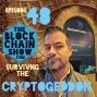 Artwork for 48: Blockchain Live 2017, Surviving the Cryptogeddon
