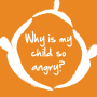 Artwork for Why is my Child So Angry?