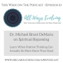 Artwork for #6: Spiritual Bypassing with Dr. Michael Brant DeMaria