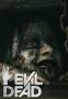Artwork for Ep. 021 - Evil Dead (2013)