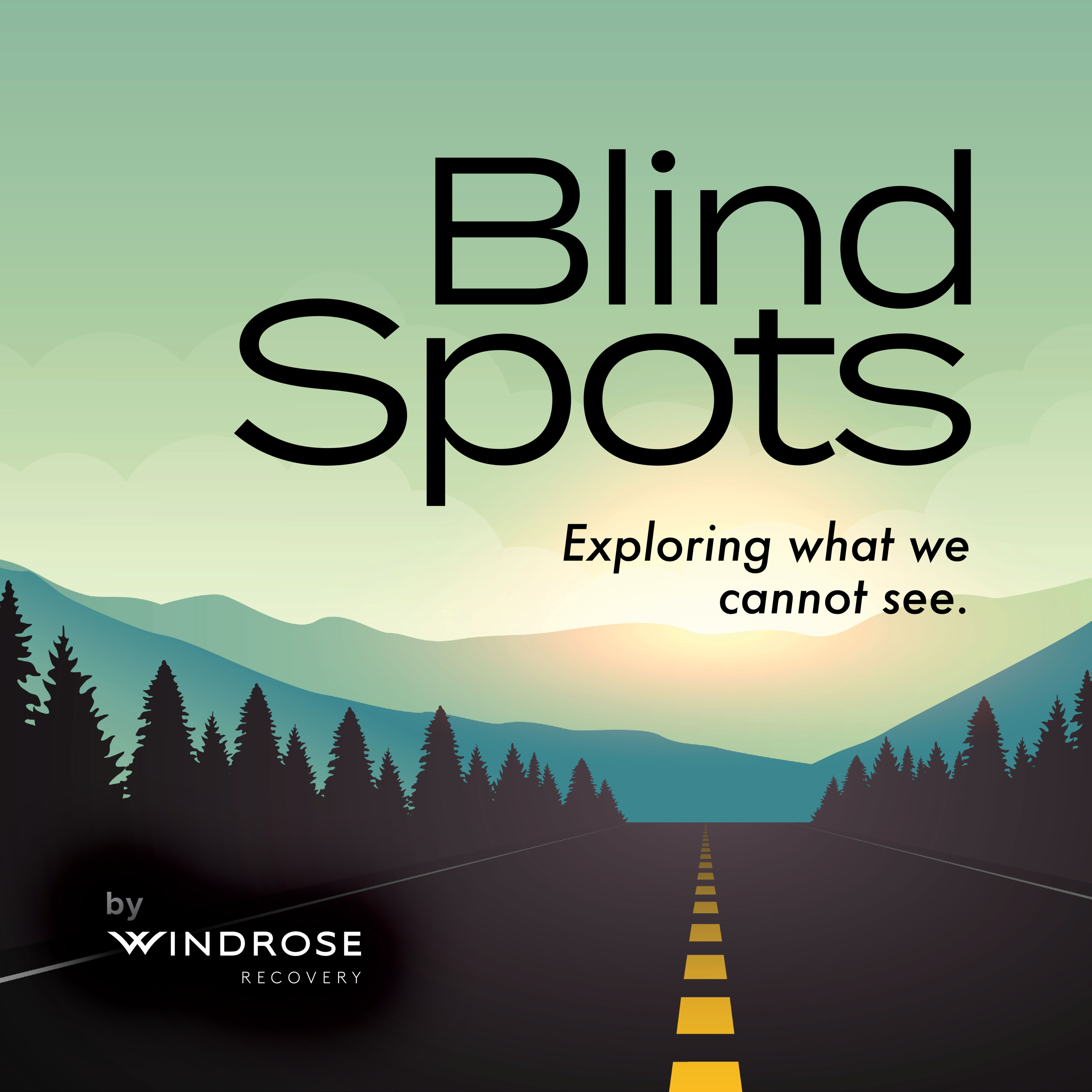 Blind Spots: Exploring What We Cannot See show art