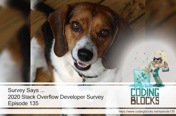 Survey Says ... 2020 Stack Overflow Developer Survey