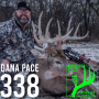 Artwork for 338 Dana Pace - Tagged Out In Illinois!