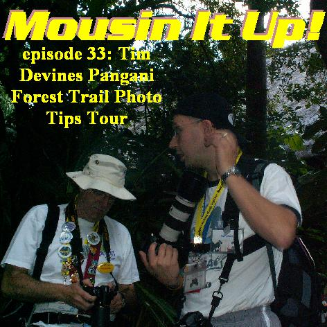 Episode 33 - Tim Devines Photo Tour of Pangani Forest trail