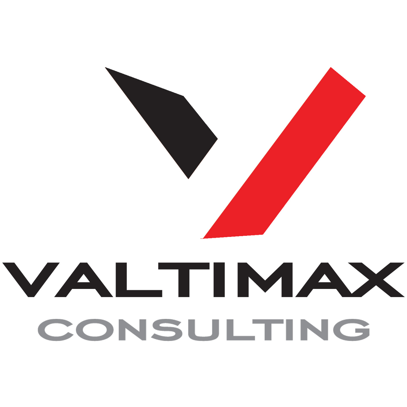 Business Strategy Marketing Mastery from Valtimax