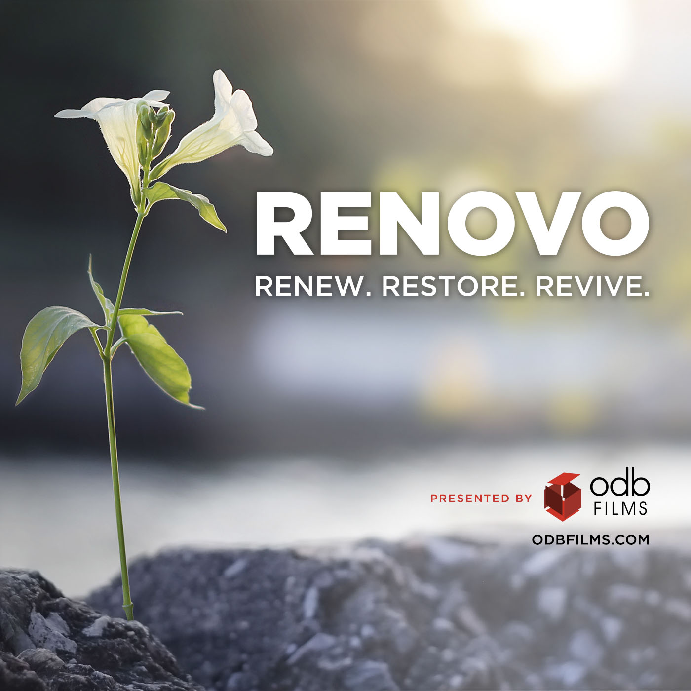 Renovo Podcast show art