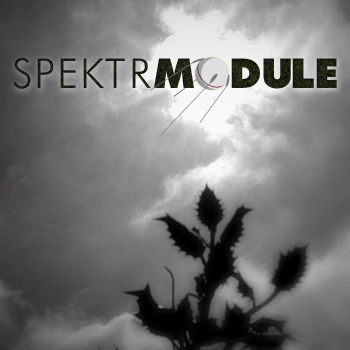 SPEKTRMODULE 26: Universal Time Crack