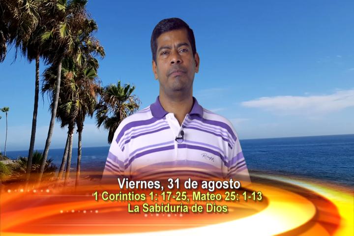 Artwork for Dios te Habla con P. Arockiasamy Arulandu, SVD, Tema el hoy: La Sabiduría de Dios