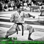 Artwork for Episode 162 - Martial Arts Forms Drills