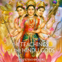 Artwork for Teachings of the Hindu Gods 05 Hanuman, The Perfect Hero