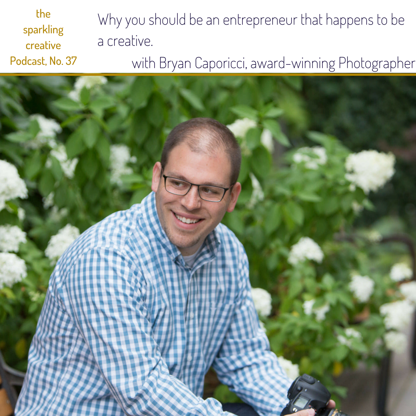 Artwork for Episode 37: Why you should be an entrepreneur that happens to be a creative.  with Bryan Caporicci