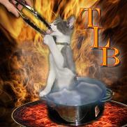 Artwork for Tastes Like Burning 218: Turkey Country