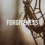 Artwork for The Economy of Forgiveness