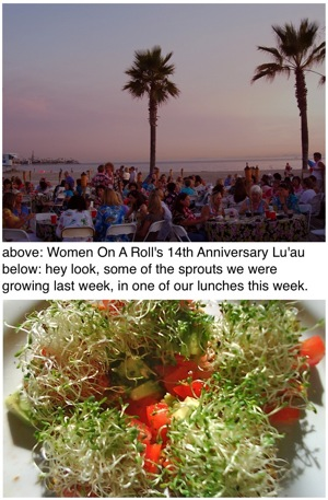 #97 Women On A Roll Lu'au in Long Beach