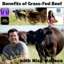 "Artwork for Episode #131: ""Benefits of Grass-Fed Beef"" with Nick Wallace"