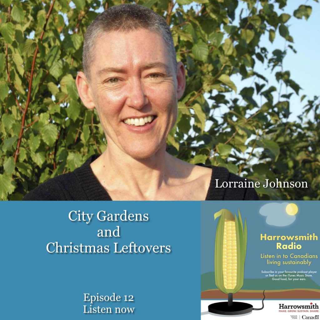 City Gardens and Christmas Leftovers