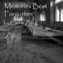 Artwork for Memories Best Forgotten