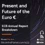 Artwork for Present and Future of the Euro, ECB Annual Report Breakdown - E232