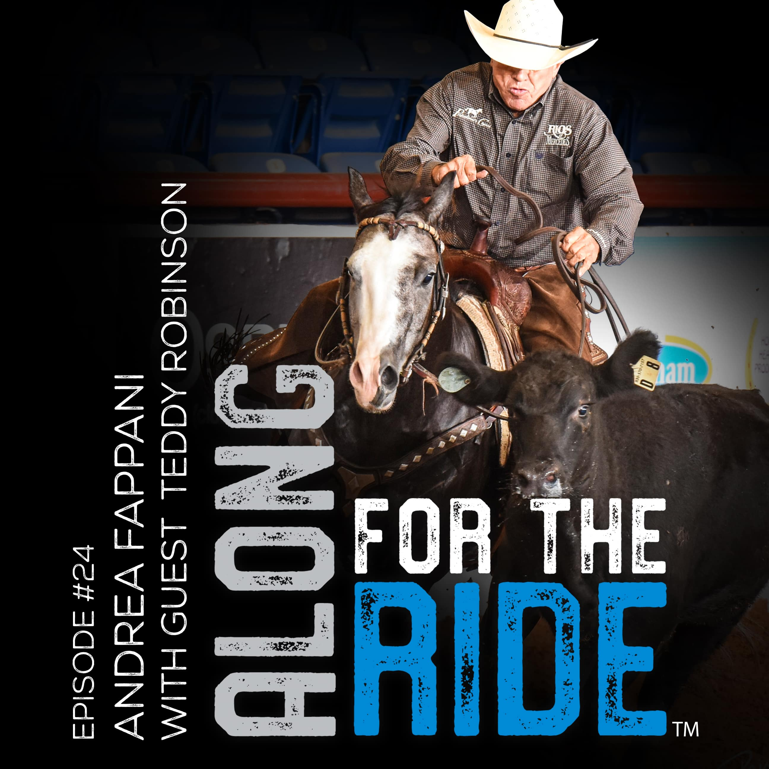 Teddy Robinson 7 Time NRCHA Open Snaffle Bit Futurity Champion -Along For The Ride