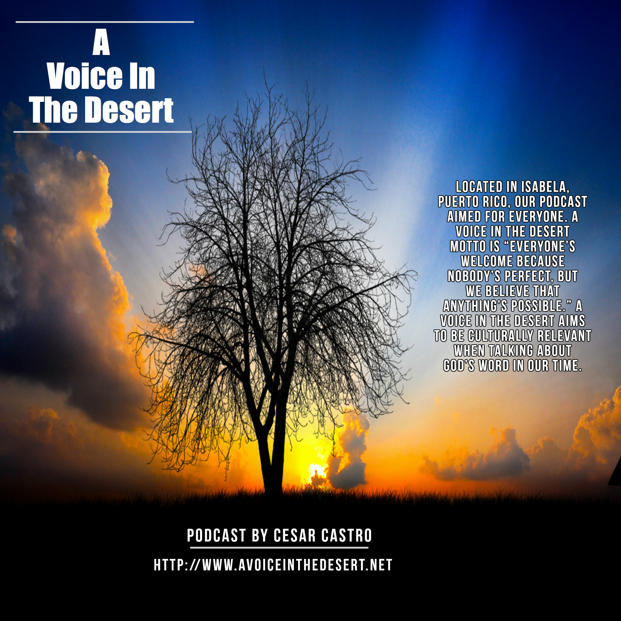 A Voice in The Desert Podcast show art