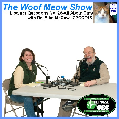 Listener Questions No. 26 All About Cats with Dr. Mike McCaw from Veazie Veterinary Clinic