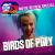 DC Movie Report for Birds of Prey show art