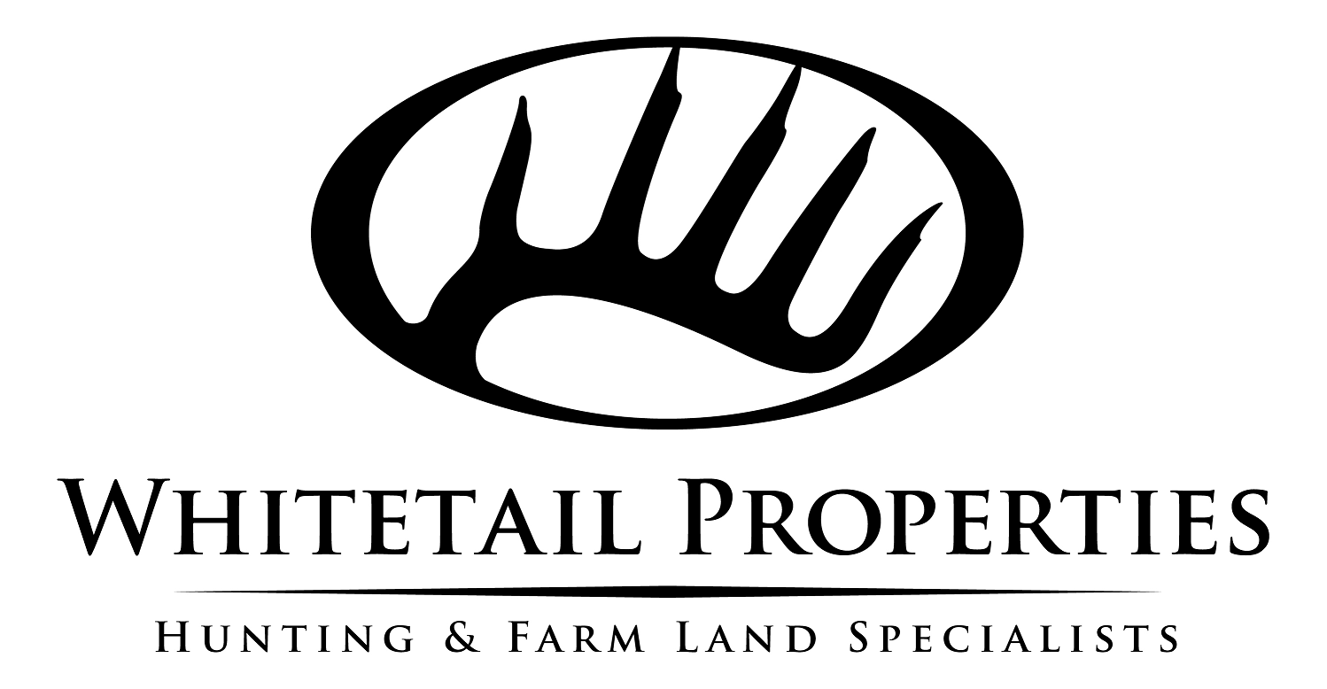 Artwork for  #19 - Dan Perez - Whitetail Properties Real Estate, When/Why To Buy Land, The Right Neighborhood, Land Specialists, Instant Equity, Investments with Income, Upgrading Farm Size, 4 Ways to Finance Land & LAND BEAT