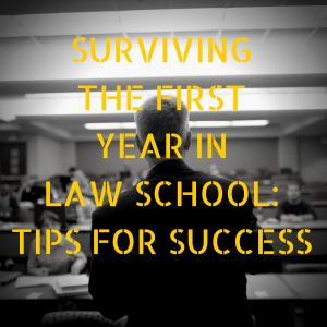 Surviving the First Year of Law School: An Interview With Romain Peyret-EP9