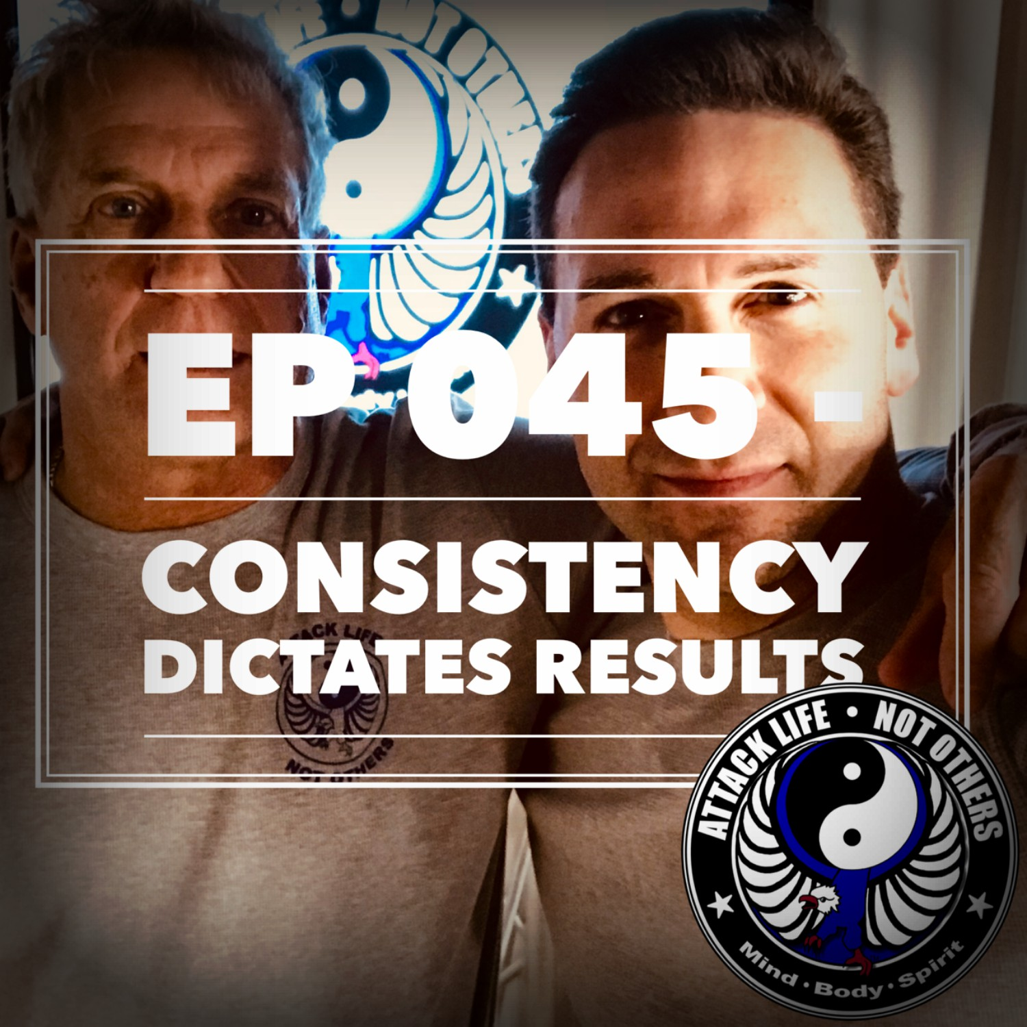 Artwork for Ep 045 - Consistency Dictates Results