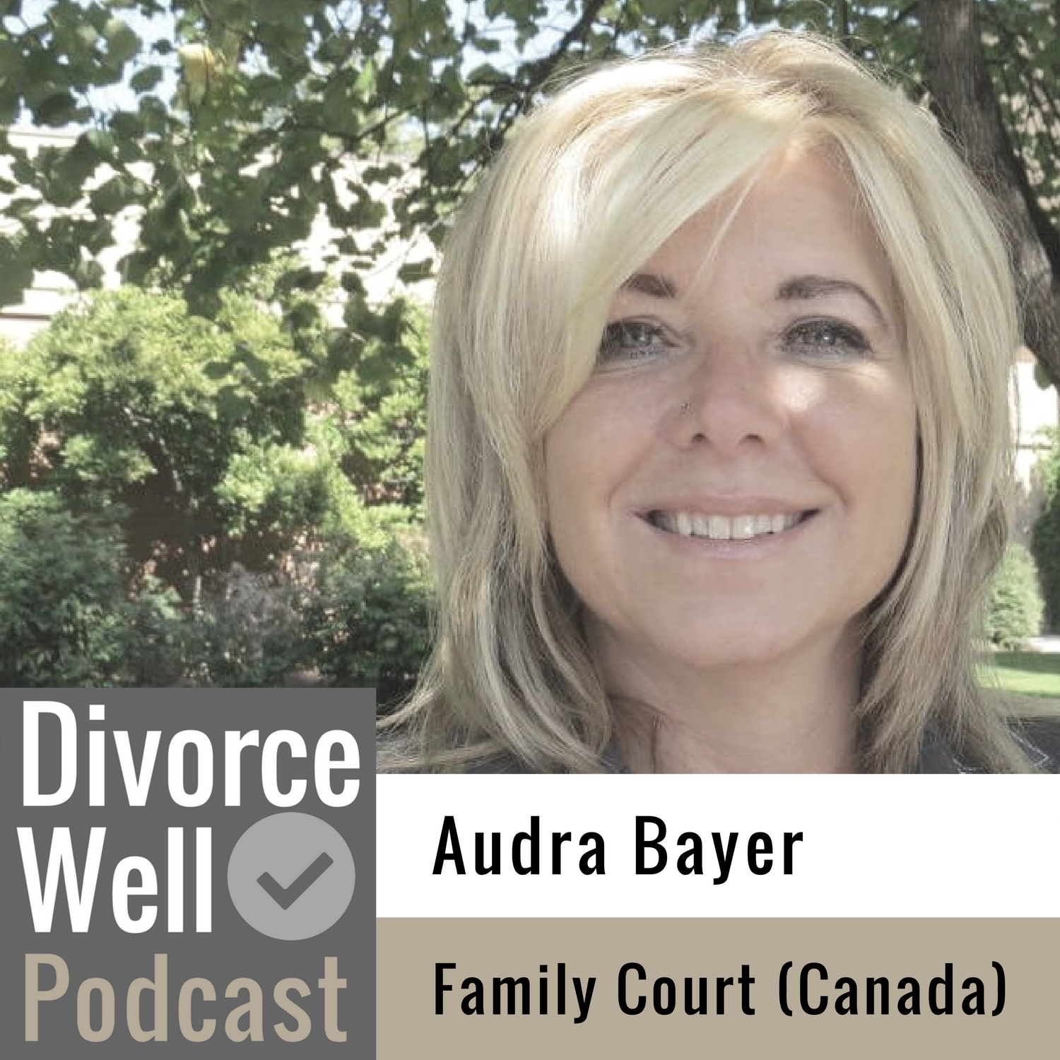 The Divorce Well Podcast - 20 - The experience of Family Court in Canada, with Audra Bayer