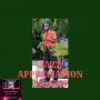 Artwork for LDG EP#041Get Jazzy - It's  Jazz Appreciation Month!