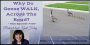 Artwork for OAC 335 Why Do Geese WALK Across The Road?