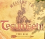Artwork for Tecumseh! #3