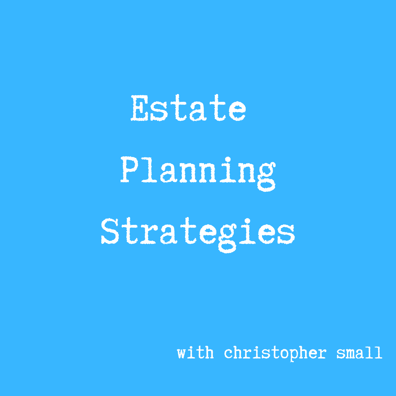 Estate Planning Strategies show art