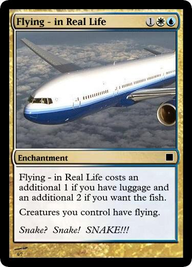 Flying - In Real Life