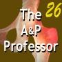 Artwork for Modeling Professional Integrity | TAPP Episode 26