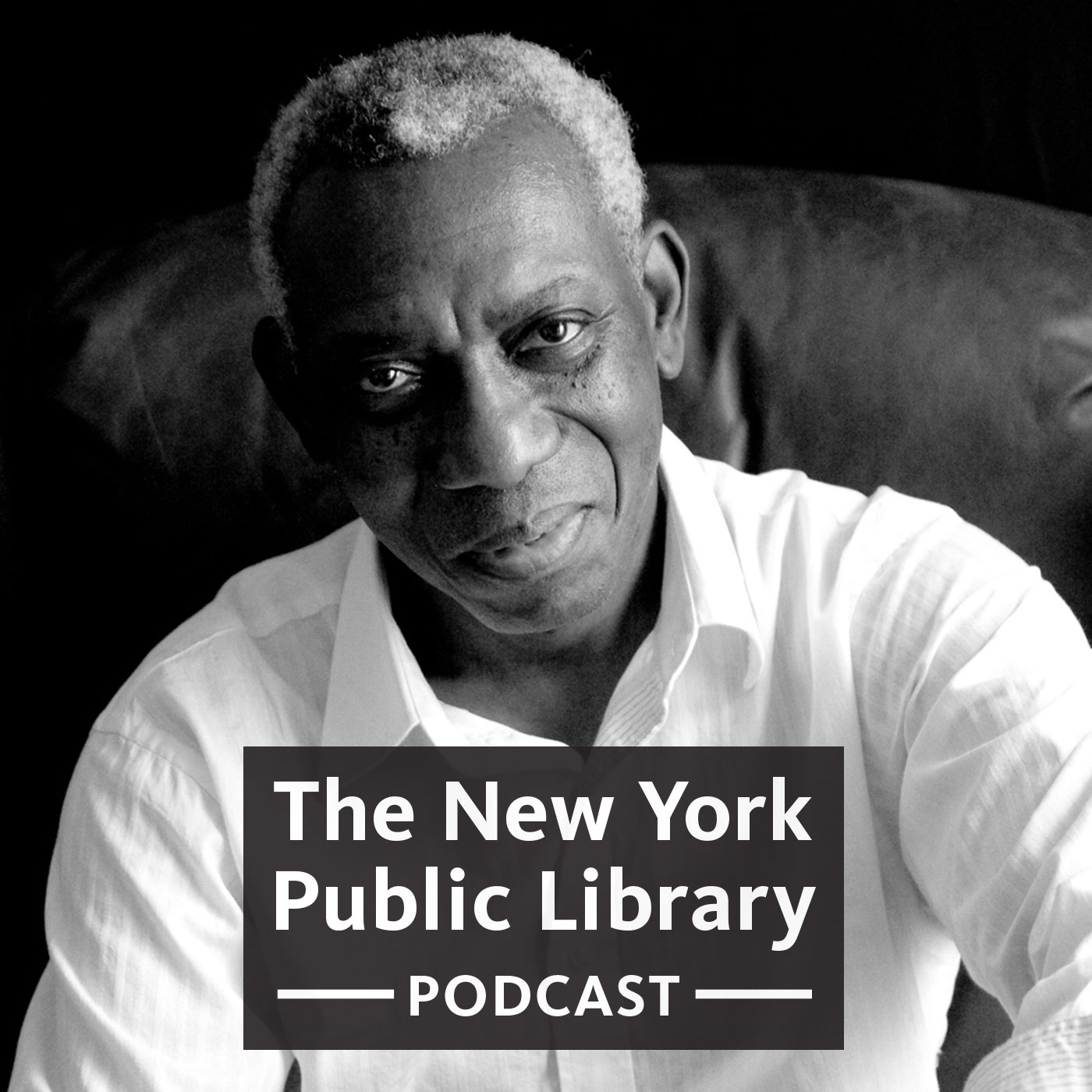 Yusef Komunyakaa on Politics, Imagery, & Memorizing Poetry