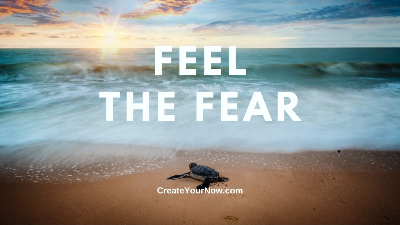 2440 Feel the Fear show art