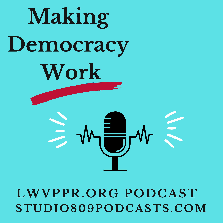 Making Democracy Work show art