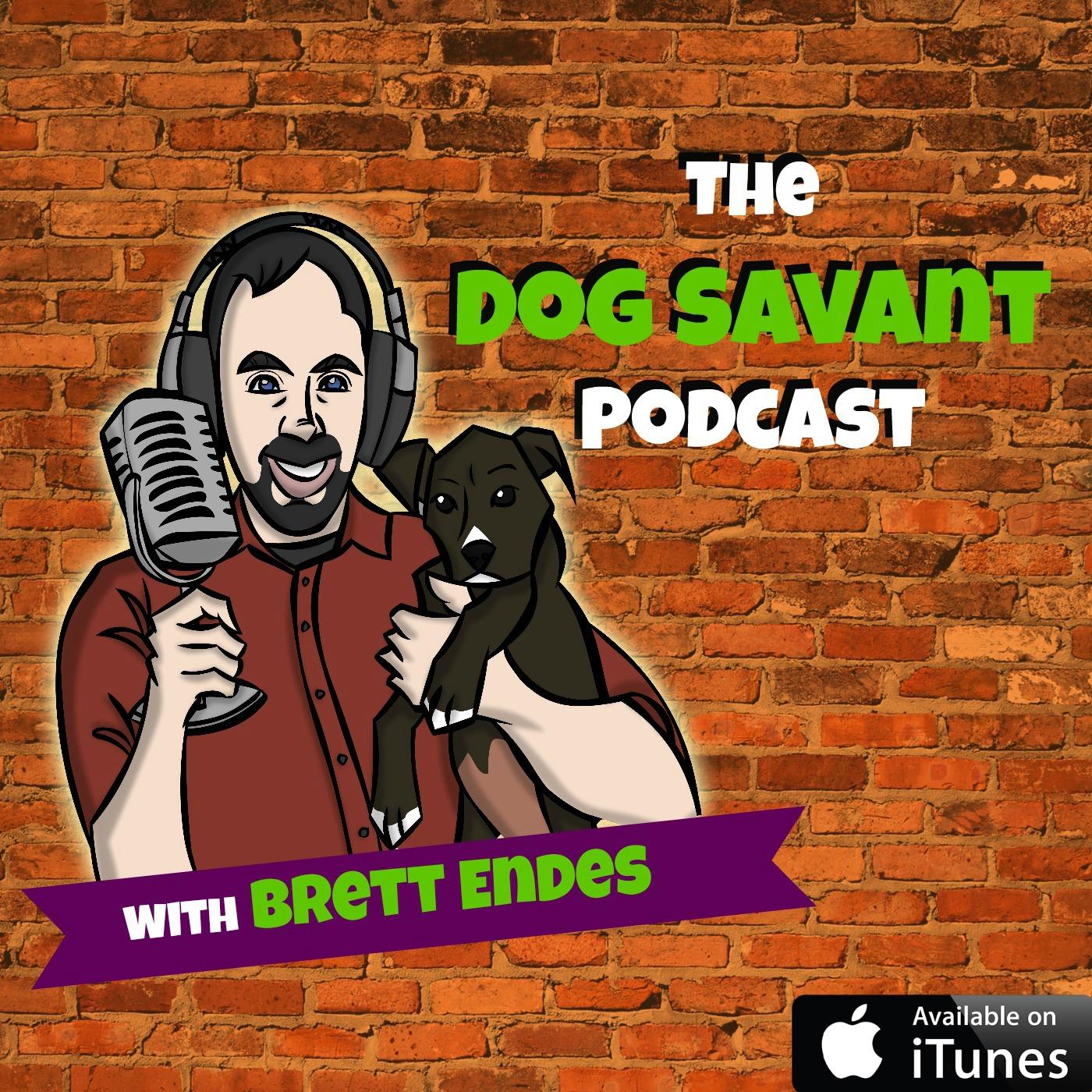 The Dog Savant Podcast show art