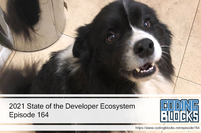 2021 State of the Developer Ecosystem