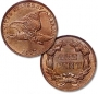 Artwork for 149-140508 In the Treasure Corner - Know Your Coins VIII - The Flying Eagle Cent