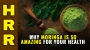 Artwork for Why MORINGA is so AMAZING for your health