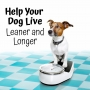 Artwork for BDP 003: How You Can Help Your Dog Live Leaner and Longer