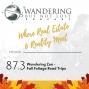 Artwork for Episode 87.3:  Wandering Zen -  Fall Foliage Road Trips